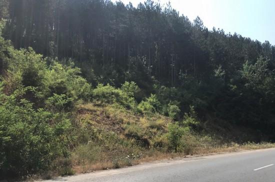Стартира укрепването на свлачището при км 72+300 на първокласния път I-6